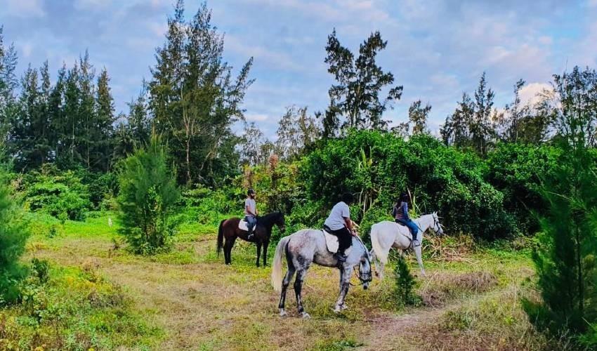 Centre Equestre de Riambel
